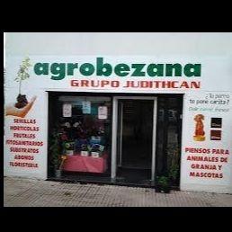 Floristeria Grupo Judithcan